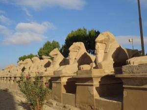 Avenida de criosfinges em Karnak - Acervo pessoal.