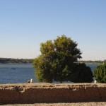 Nilo visto do templo de Kom Ombo - Acervo pessoal.