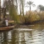 Vila Faraônica (Cairo) - Pesca