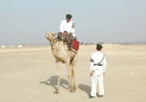 CAIRO – Os guardas das pirâmides de Saqqara vão abandonar as suas armas de madeira (cassetetes) em favor de armas de fogo. O governo tem […]
