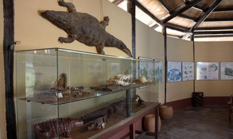 Após três anos de construção, o Museu de crocodilos em Aswan irá compartilhar o significado dos crocodilos egípcios e do antigo deus crocodilo Sobek, com […]