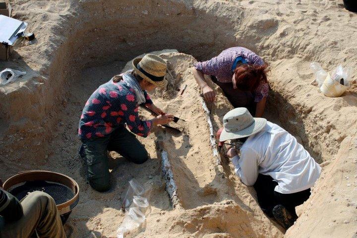 Desde 2006, o Projeto Amarna tem investigado um cemitério para pessoas que não faziam parte da elite da cidade de Akhenaton. Uma descoberta notável foi […]