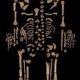 Pesquisadores encontraram indícios de câncer em um esqueleto de um homem que teria entre 25 e 35 anos e que viveu no Egito Antigo há […]