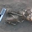 Oesqueleto de uma criança datando por volta de 3.800 a.C, descoberto em Nag Al-Qarmila, Assuã, pode ser o mais antigo caso de escorbuto (deficiência em […]